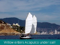 Willow sails into Acapulco Bay