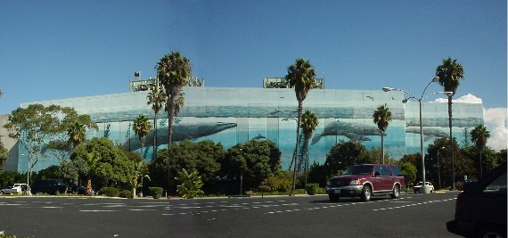 Wyland Painting